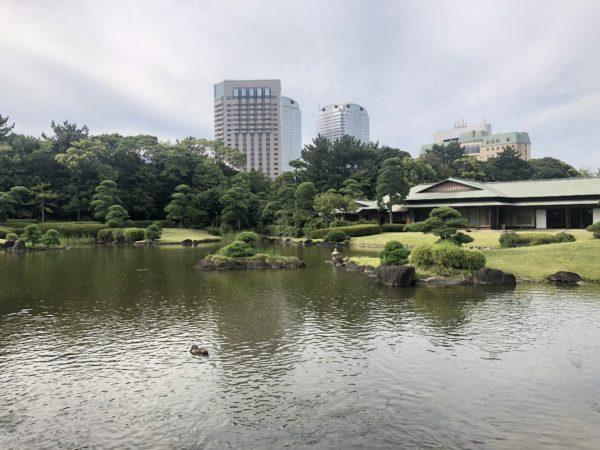 見浜園 / Mihamaen Garden, Chiba