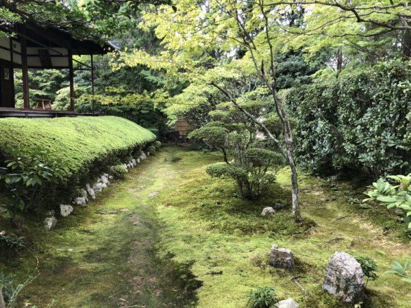 妙心寺 桂春院庭園