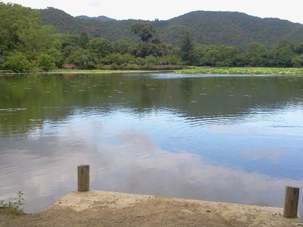 大覚寺大沢池 / Daikaku-ji Temple Osawa Pond, Kyoto