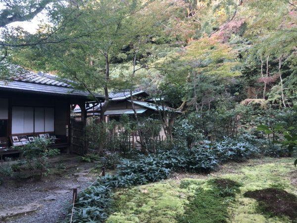 泉涌寺 来迎院庭園「含翠庭」