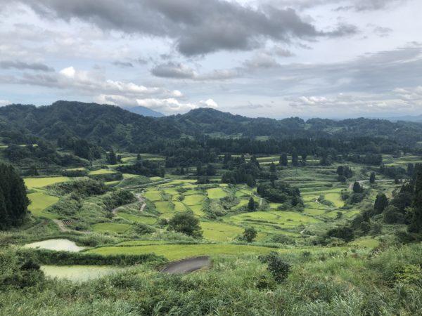 星峠の棚田 / Hoshitoge Terraced Rice Fields, Tokaichi, Niigata