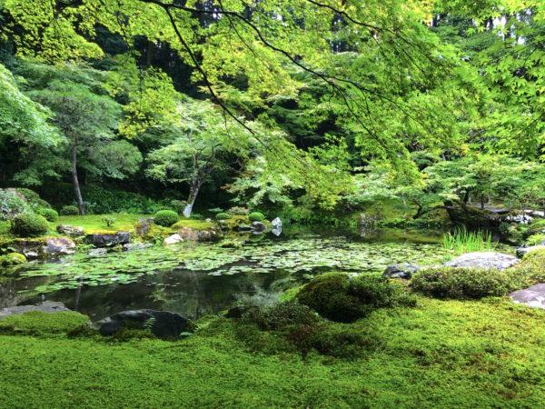 南禅寺 南禅院庭園 / Nanzen-ji Temple Nanzen-in Garden, Kyoto