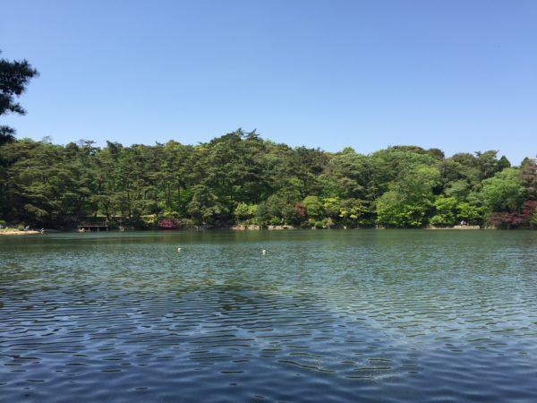 再度公園・再度山永久植生保存地・神戸外国人墓地