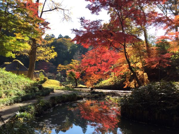 西山御殿跡(西山荘) / Seizanso Garden, Hitachi-Ota, Ibaraki
