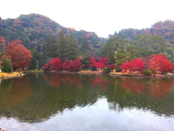 白水阿弥陀堂 / Shiramizu Amida-do Garden, Iwaki, Fukushima