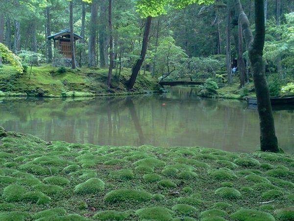 西芳寺庭園(苔寺) / Saiho-ji Temple Garden, Kyoto
