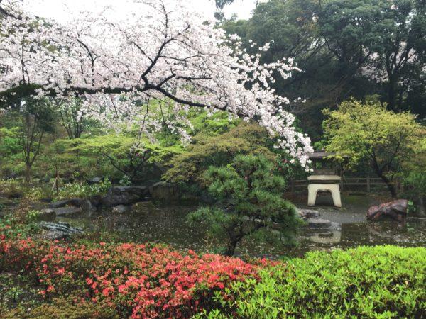 掃部山公園 / Kamonyama Park, Yokohama, Kanagawa