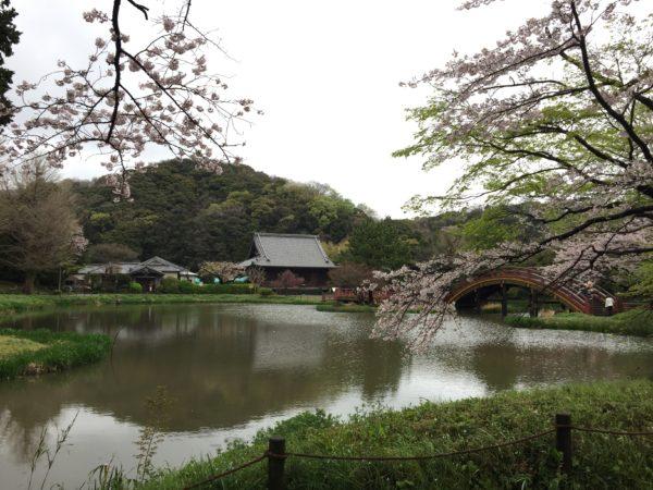 称名寺庭園 / Shomyo-ji Temple Garden, Yokohama, Kanagawa