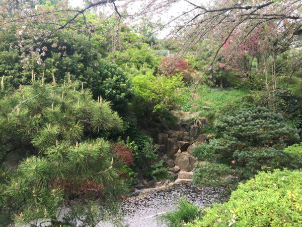 西郷山公園 / Saigoyama Park, Tokyo