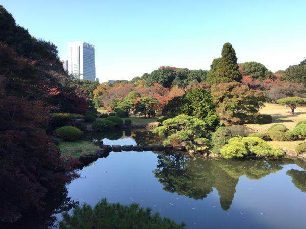 新宿御苑 / Shinjuku Gyoen National Garden, Tokyo