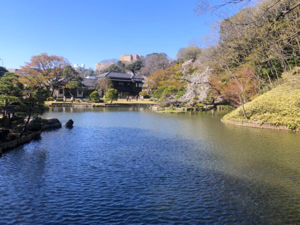 肥後細川庭園(新江戸川公園)