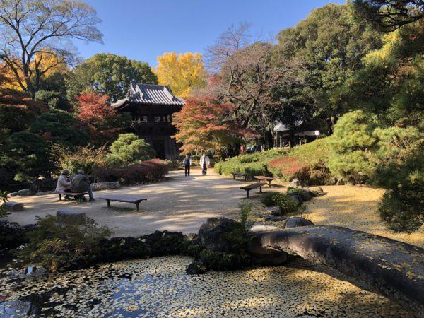 鑁阿寺(大日苑)庭園