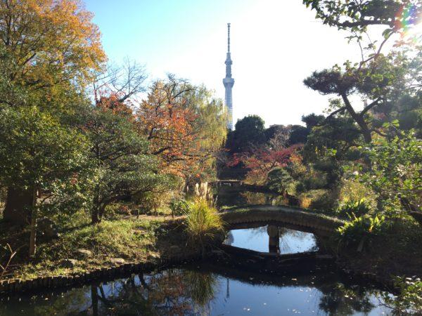 向島百花園 / Mukojima-Hyakkaen Garden, Tokyo