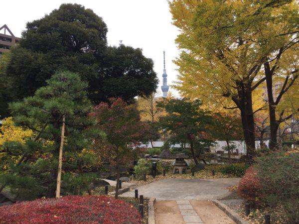 横網町公園 日本庭園 / Yokoamicho Park Japanese Garden, Sumida-ku, Tokyo