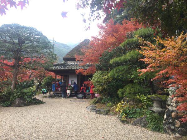 伊東玄朴旧宅庭園 / Genboku Ito's Old House Garden, Kanzaki, Saga