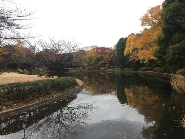 北の丸公園 / Kitanomaru Park, Chiyoda-ku, Tokyo
