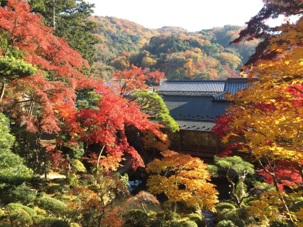 修禅寺庭園 / Shuzen-ji Temple Garden, Izu, Shizuoka