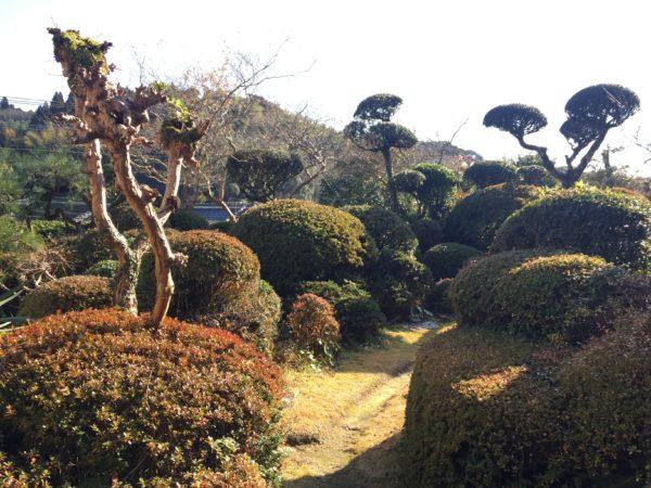 志布志麓庭園 清水氏庭園 / Shibushi-Fumoto Kiyomizu-shi Garden, Shibushi, Kagoshima