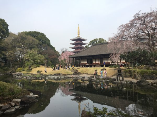 伝法院庭園 / Asakusa Denpo-in Garden, Tokyo