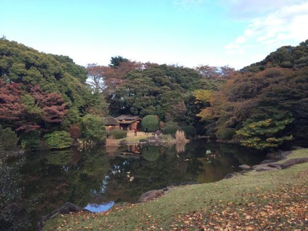 東京国立博物館庭園 / Tokyo National Museum Garden, Tokyo
