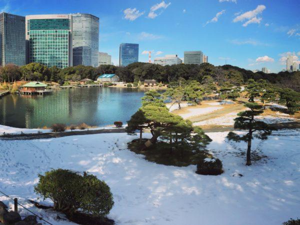 浜離宮恩賜庭園(雪)