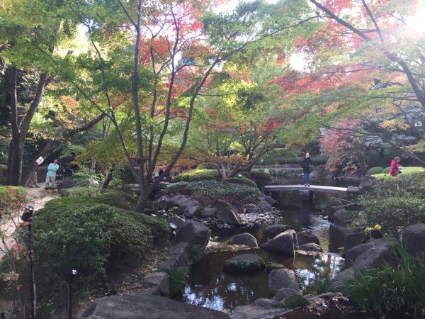 大田黒公園 / Otaguro Park, Tokyo