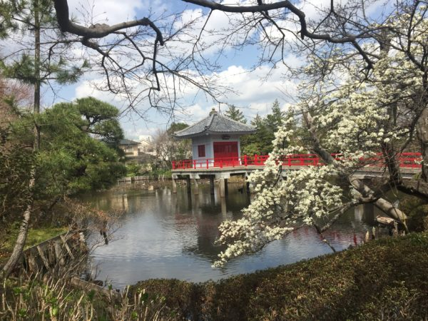 高源院庭園(烏山の鴨池)