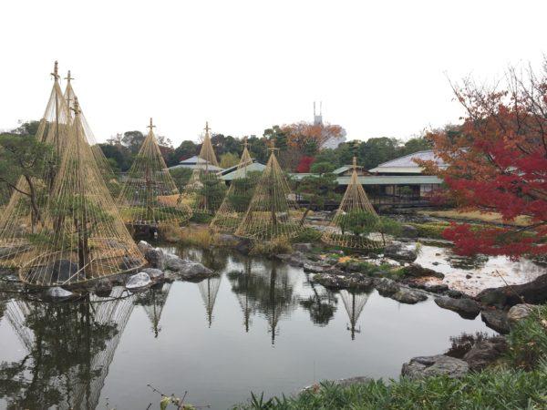 白鳥庭園 / Shirotori Garden, Nagoya, Aichi
