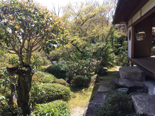 善法律寺庭園