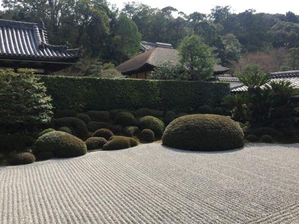 酬恩庵一休寺庭園 / Shuonan Ikkyu-ji Temple Garden, Kyoto