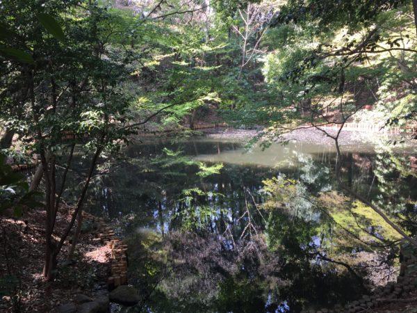 滄浪泉園 / Soro Senen Garden, Koganei, Tokyo