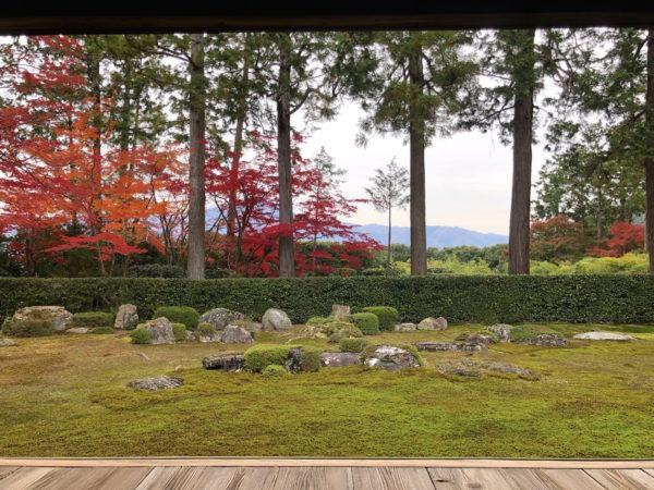 圓通寺庭園 / Entsu-ji Temple Garden, Kyoto