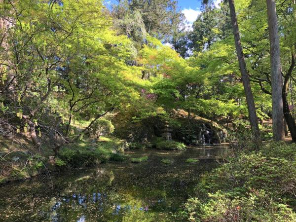 原邸別荘 天神山庭園 / Hara's Tenjinyama Garden, Kamikawa, Saitama