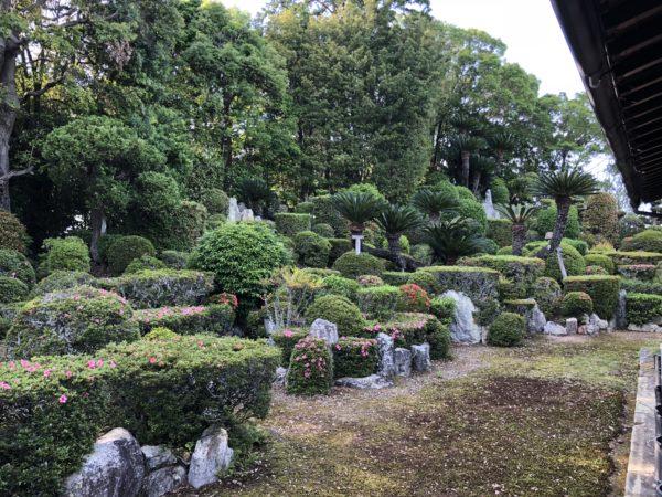 医王寺庭園 / Iouji Temple Garden, Iwata, Shizuoka