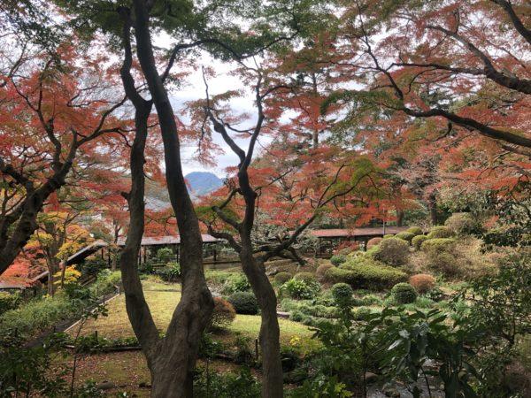 古稀庵庭園(旧山縣有朋別邸) / Koki-an Garden, Odawara, Kanagawa