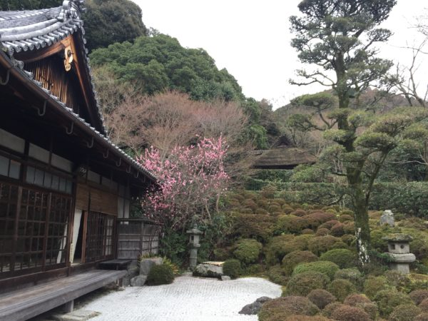 金福寺庭園 / Kinpuku-ji Temple Garden, Kyoto