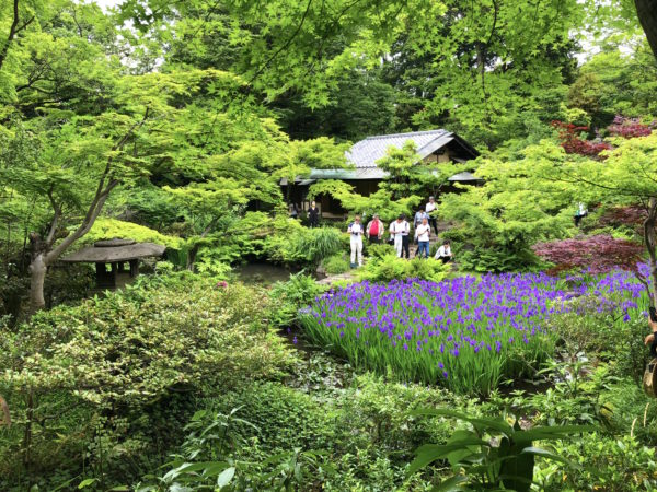根津美術館庭園 / Nezu Museum's Garden, Minato-ku, Tokyo