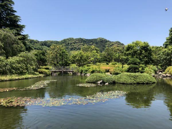 城北公園 日本庭園