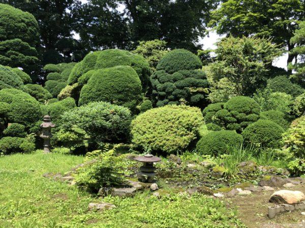 宗福寺庭園 雨香庭