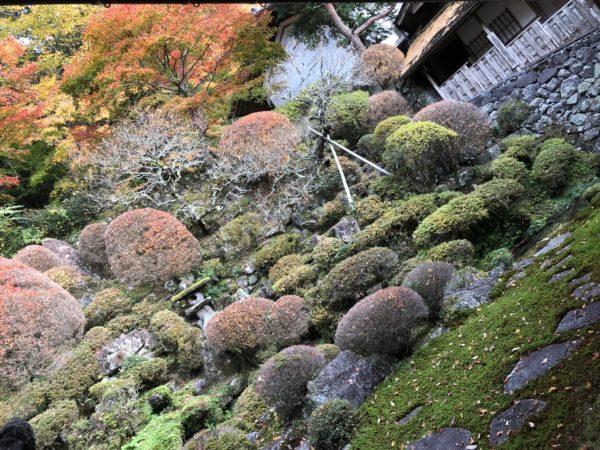 禅昌寺庭園「萬歳洞」