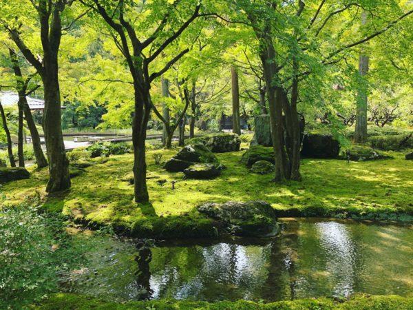 しょうざんリゾート京都庭園