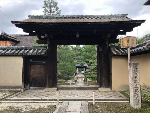 大徳寺 真珠庵庭園