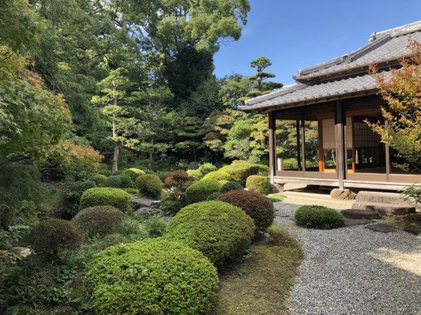 護国寺庭園