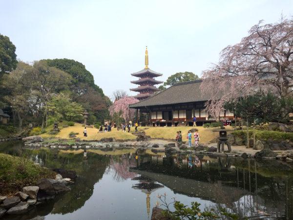 浅草寺 伝法院庭園 / Senso-ji Temple Denbo-in Garden, Tokyo