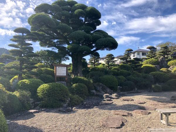 赤瀬邸庭園