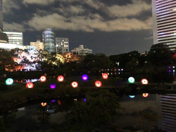 旧芝離宮恩賜庭園(ライトアップ)