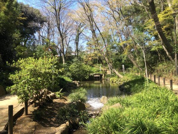 おとめ山公園(旧相馬子爵邸庭園)