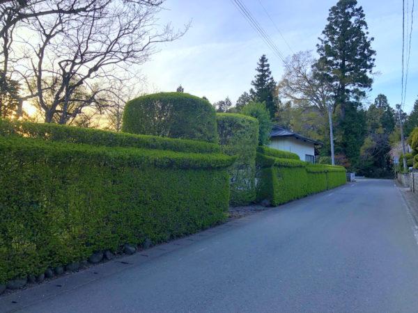 細目家庭園