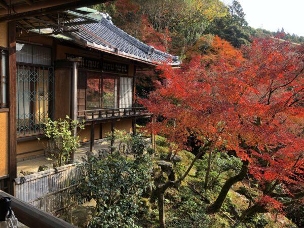 和中庵(旧藤井彦四郎邸)庭園