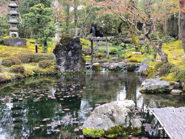 大寧軒庭園(春の特別拝観)